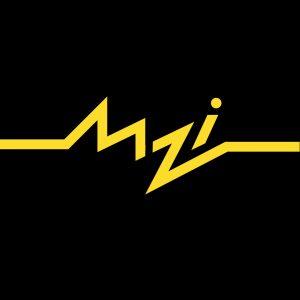 Muzika za imunitet logo